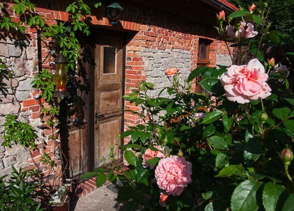 Garten  - Ferienwohnung im Fachwerkhäuschen im Harz - Objekt 5864-1