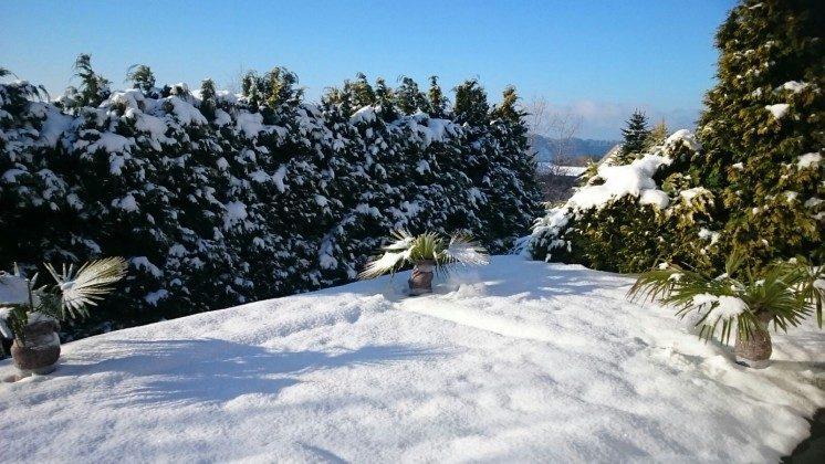 Terrassen-Aussicht