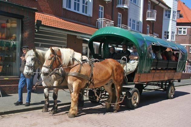 Kutsche vor der Strandburg REF: 50969