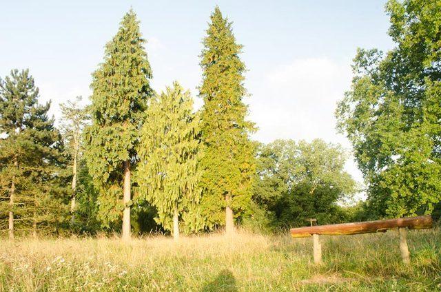 Bild 5 - Ferienwohnung - Objekt 174313-45.jpg
