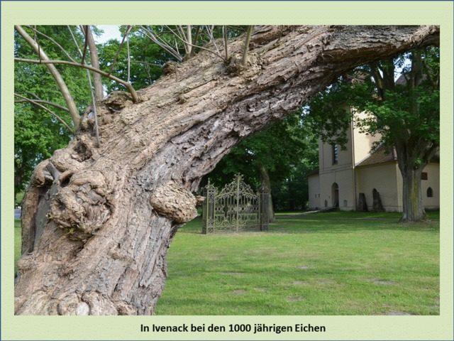 Bild 12 - Ferienwohnung - Objekt 193060-1.jpg