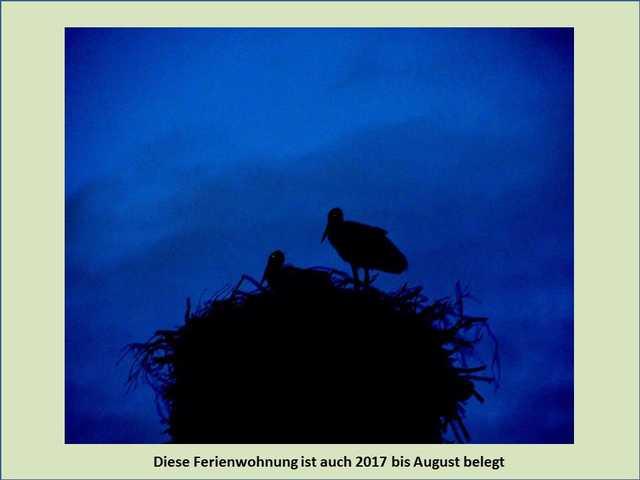Bild 3 - Ferienwohnung - Objekt 193060-1.jpg