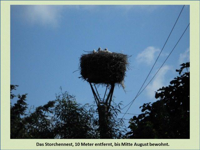 Bild 8 - Ferienwohnung - Objekt 193060-1.jpg