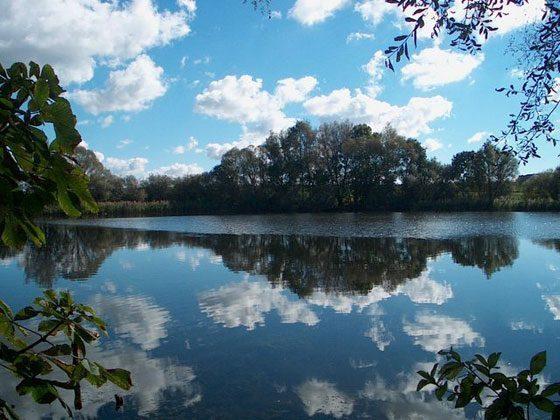 Mecklenburgische Seen Ferienwohnung Storchennest Ref. 85071-1 Bild 2
