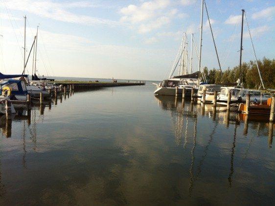 Am Bodden Ostsee Ferienwohnungen unter Reet Ref: 109908-5