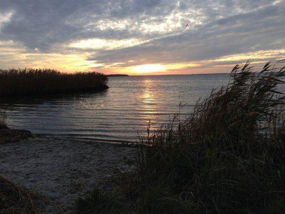 Am Strand  Ostsee Ferienwohnungen unter Reet Ref: 109908-5