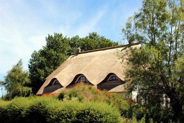 Ostsee Ferienwohnungen unter Reet Ref: 109908-5