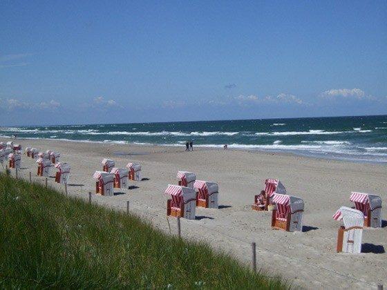 Ferienhaus Darss am Strand Umgebung Objekt 2662-1