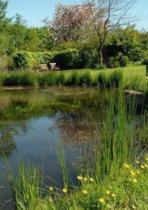 Refugium im Norden. Sitzecke am Teich