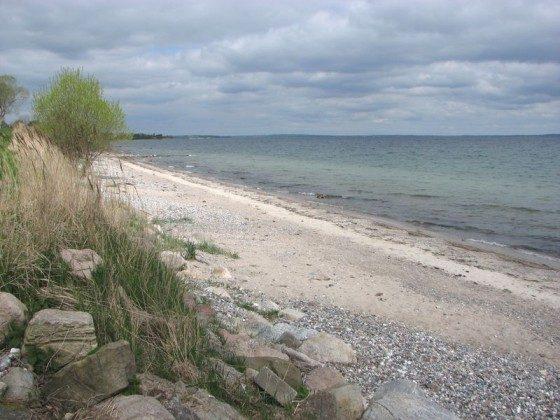 Bild 10 - Ostsee - Geltinger Bucht - Ferienhaus Gruber - Objekt 47664-2