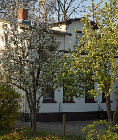 Bild 2 - Ferienwohnung - Objekt 186494-17.jpg