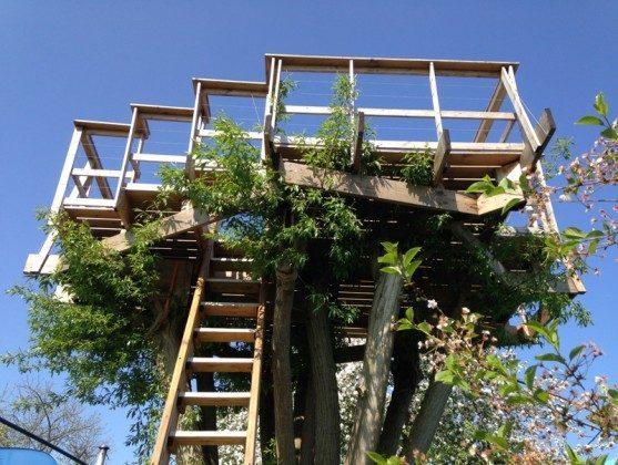 Baumterrasse Detail 2015 ... jetzt verwachsen