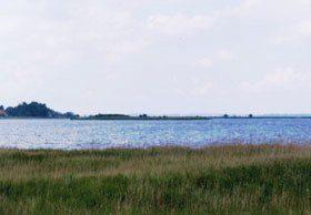 Bild 7 - Ferienhaus Ostsee Haus Inselpanorama - Objekt 2158-1