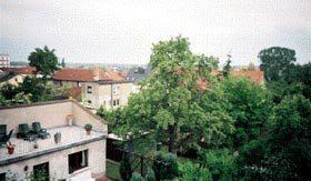 Bild 2 - Ostsee Ribnitz-Damgarten Ferienwohnung Biering - Objekt 29908-1
