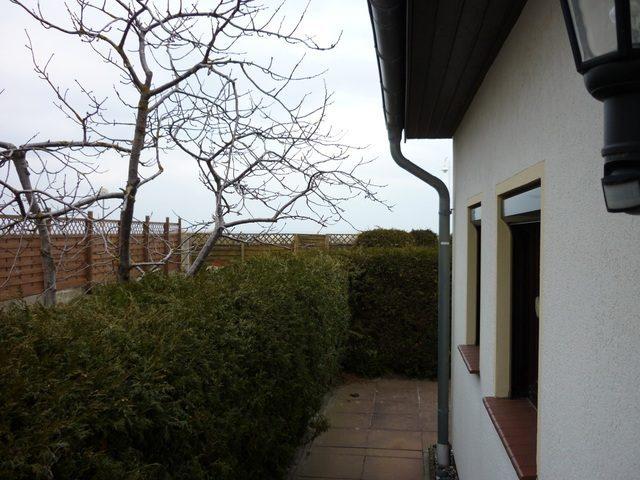 Bild 2 - Ferienwohnung - Objekt 177833-1.jpg
