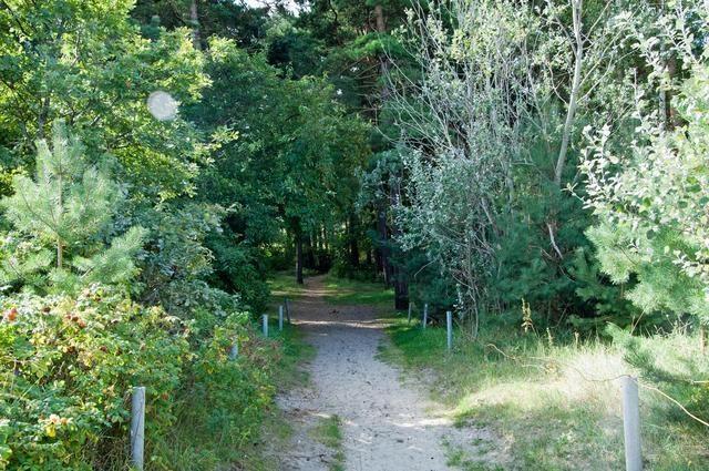 Bild 9 - Ferienwohnung - Objekt 177858-3.jpg