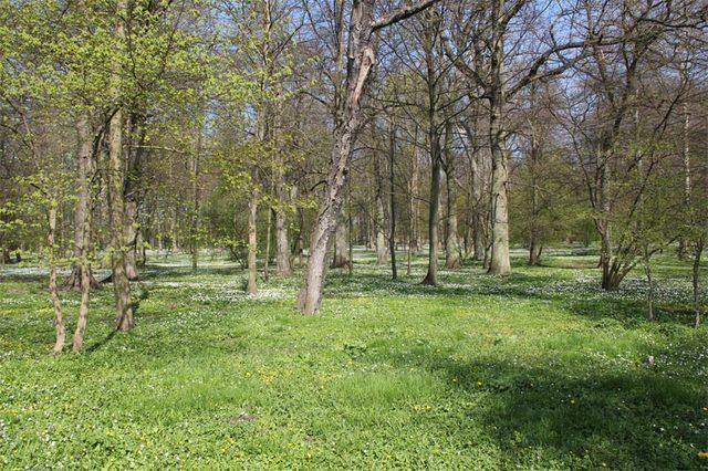 Bild 4 - Ferienwohnung - Objekt 174313-14.jpg