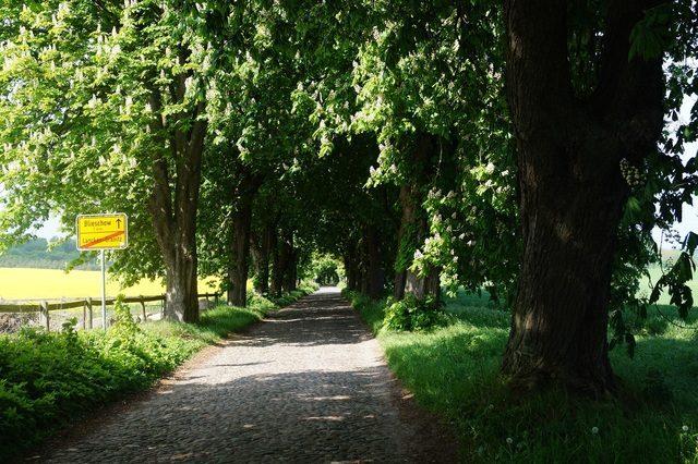 Bild 15 - Ferienwohnung - Objekt 177718-64.jpg