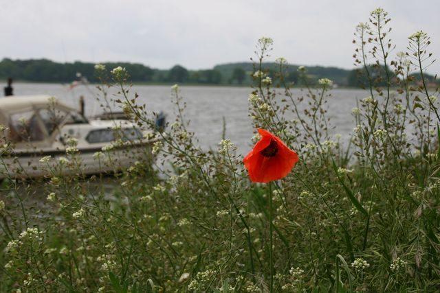 Bild 8 - Ferienwohnung - Objekt 178072-100.jpg