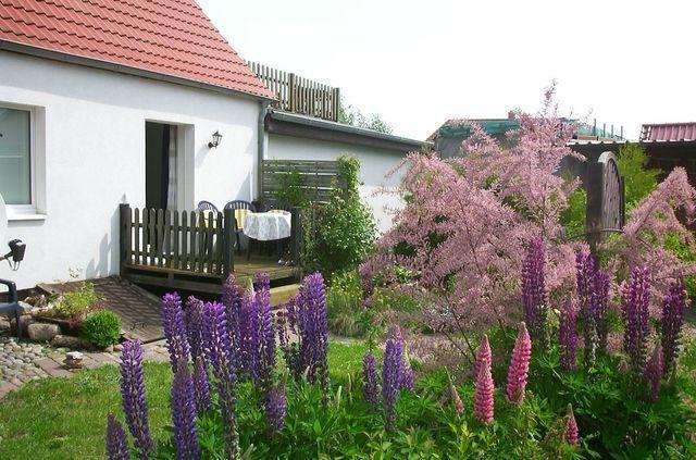 Ferienwohnung Poel mit Garten