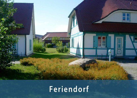 Bild 4 - Ferienwohnung auf Bakenberg bei Dranske - Objekt 142957-1