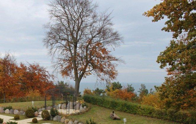 Herbst: Blick vom Kliff Ref. 128664