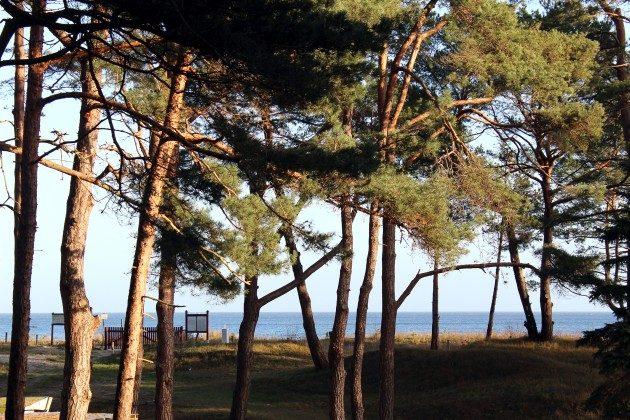 Aussicht Baabe Ferienwohnung Ostseeperle A 0.13