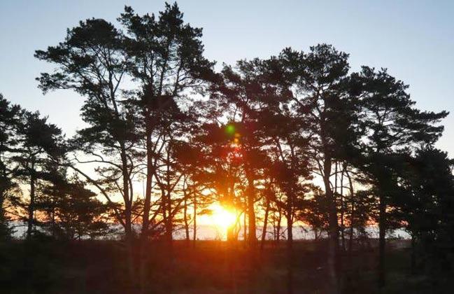 Sonnenuntergang vorm Haus Meeresblick Ferienwohnung Morgensonne