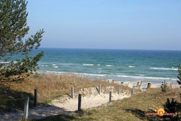 Weg zum Strand von Baabe Ferienwohnung Am Strand 2 A 2.22