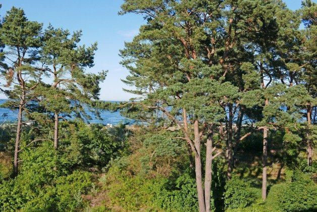 Blick vom Balkon  Haus Meeresblick Baabe