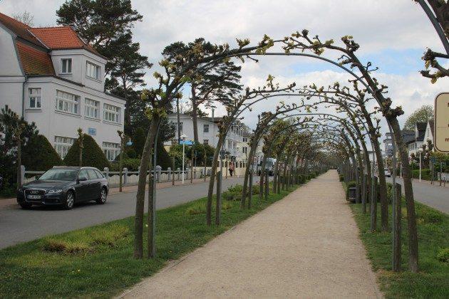 """Flanieren in der Strandstraße Ferienwohnung 03 """"Ahoi"""" Ref. 211406-1 im Villen-Ensemble"""