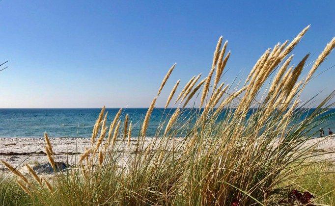 Strand Baabe - Dünen und Meer