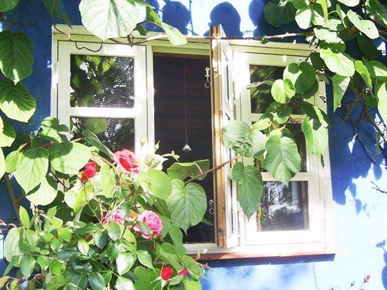 Ferienhaus Rügen mit Sauna
