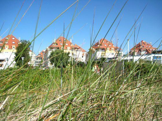 Bild 17 - Ostsee Grossenbrode Haus Sonnenschein Wohnung 20 - Objekt 145967-1