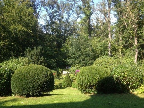 Country Garden Schlei Ferienwohnung Country Garden Ref: 176429