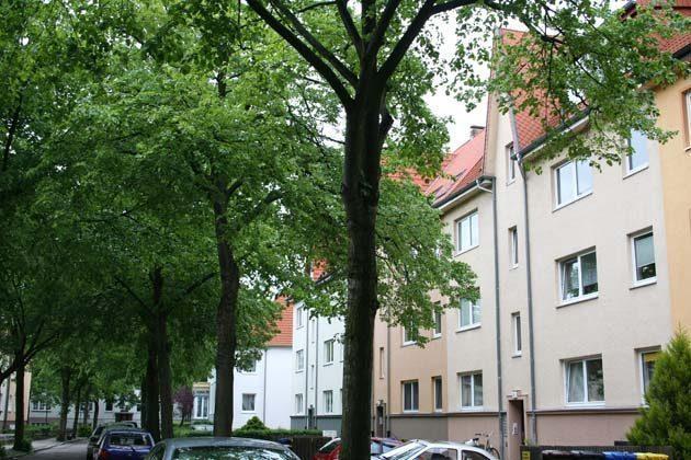 Ferienwohnung Möwenflug-11190-Aussenansicht