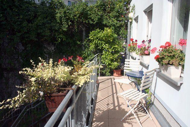 Warnemünde Ferienwohnungen Villa Winkler 58843-15