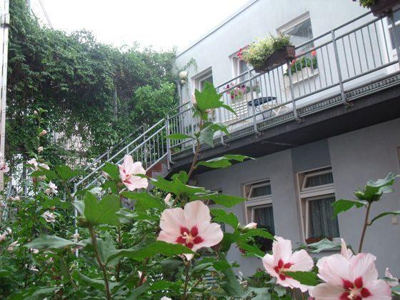Ferienwohnungen Winkler Hinterhaus 58843