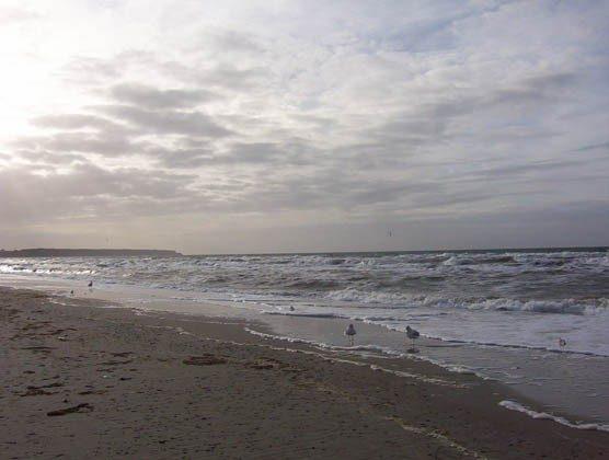 Warnemünde Ferienwohnung Grothmann - Strand - 78054 - 1