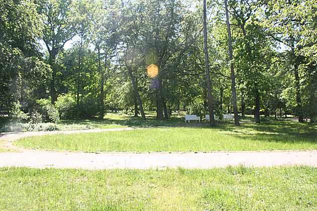 Bild 16 - Warnemünde Ferienwohnung Lulinn Ref. 82001 - Objekt 82001-1