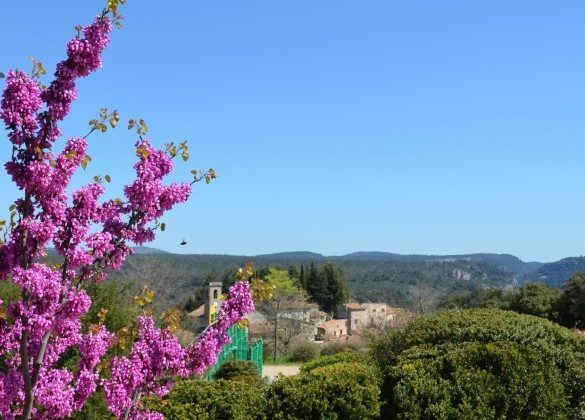 Provence Ferienhaus Maison mes Reves Bild 17