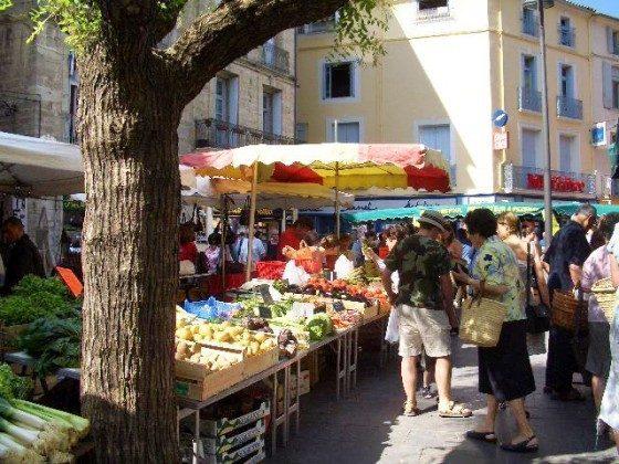 Markt Languedoc Ferienhaus bei Clermont l'Herault Objekt 2233-1