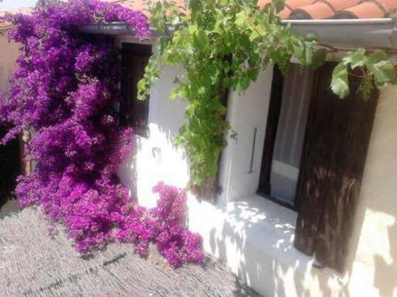Gartenfassade mit Bougainvillea