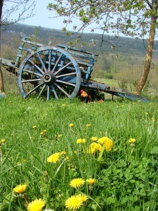 Bild 7 - Frankreich Foix Petit Gite de Mailhac - Objekt 127531-3