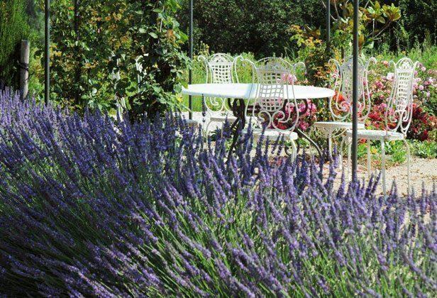 Bild 10 - Frankreich Provence Ferienwohnungen - Objekt 18602-1