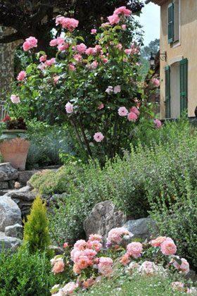 Bild 20 - Frankreich Provence Ferienwohnungen - Objekt 18602-1