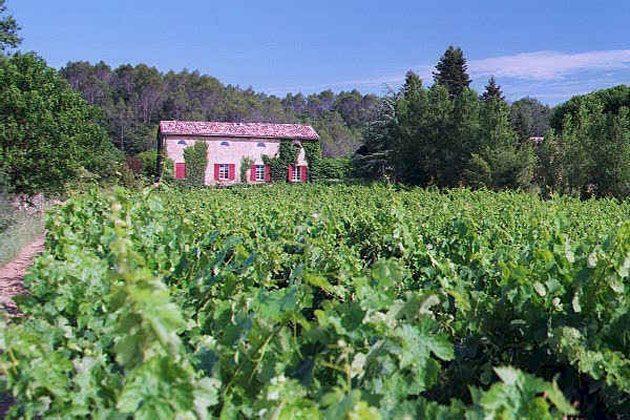 Bild 21 - Frankreich Provence Ferienwohnungen - Objekt 18602-1