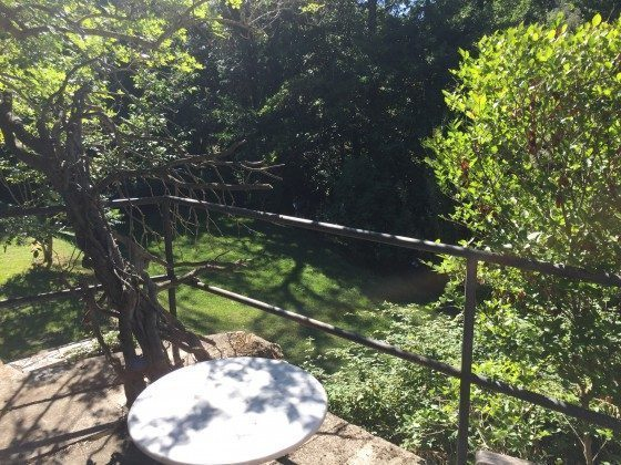 Blick zum Flussufer/Rückseite des Grundstücks