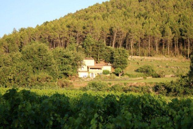 Provence Entrecasteaux Landhaus Le Bas de Pierre Ambert Bild 4