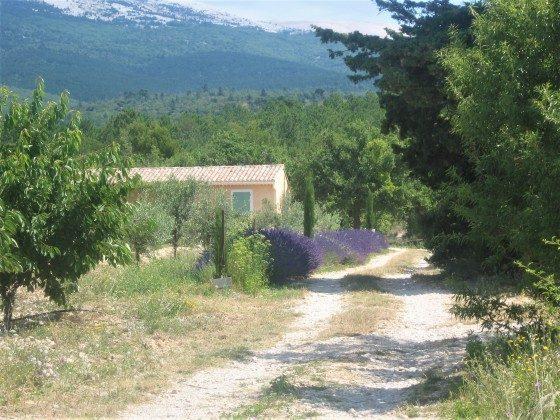 "Frankreich Provence Ferienhaus ""Maison Lisa"" Bild 12"
